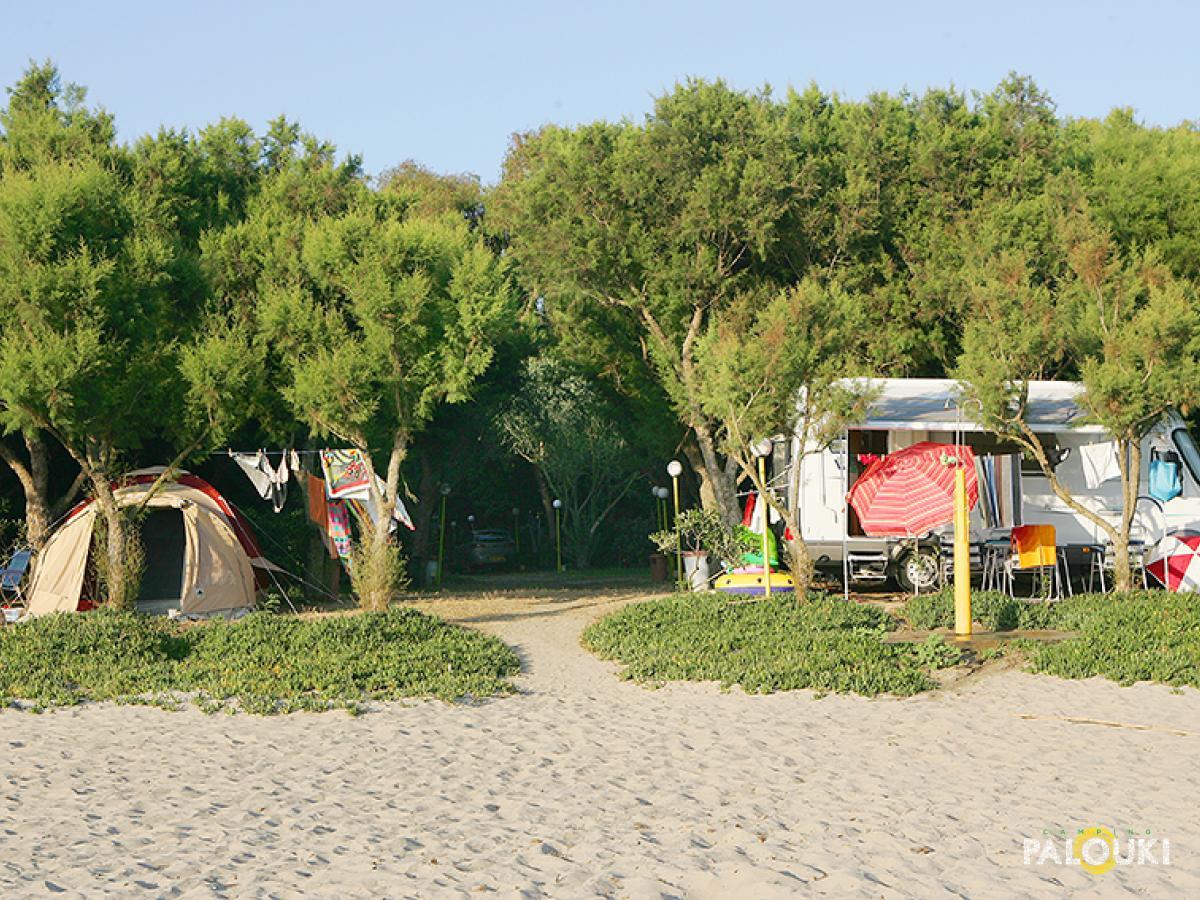 camping palouki amaliada peloponesses greece